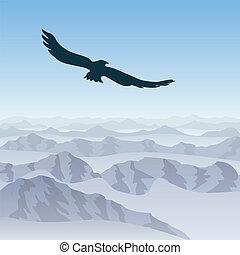 lone eagle soars over the mountain landscape