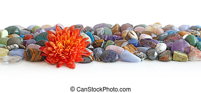 Lone flower head and tumbled crystal header