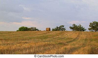 Lone haystack in an open field.