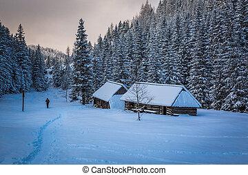 Lone man on winter mountain trail