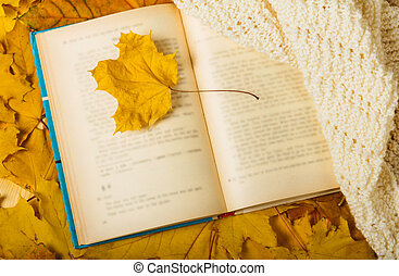 Lone of autumn leaf and scarf lying on open book - Lone ...
