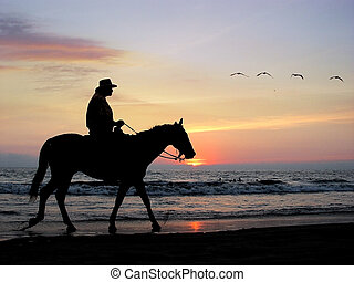 Lone rider at sunset