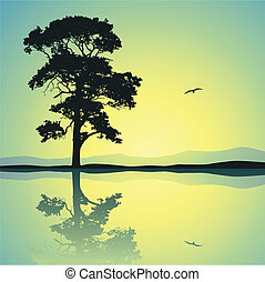 Lone Tree - A Single Tree Standing Alone with Reflection in ...