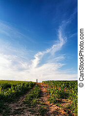 Lone woman standing on a dirt road leading off into the sky