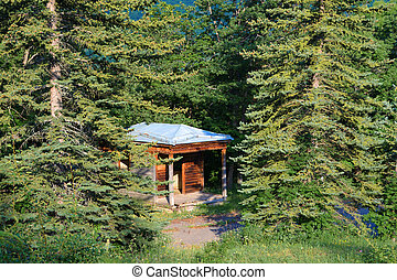 Lonely house. Hut in the forest