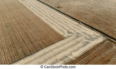 lonely car traveling in field, aerial view