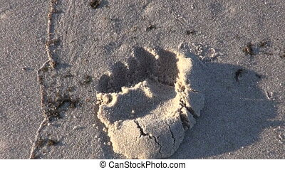 lonely footprint on sea  beach