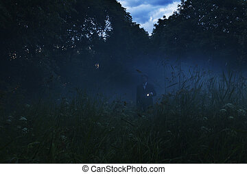 Lonely man with flashlight wandering in vague forest landscape. Mysterious light in gloomy dark field with mist between trees and grass.Horror moment in foggy forest. Dark man silhouette on the trail