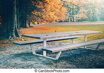 Lonely picnic place in autumn park