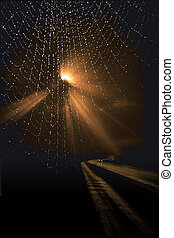 Lonely Road and spiders web