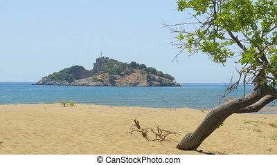 """lonely single tree, boat trip, iztuzu turtle beach, dalyan, turkey"""