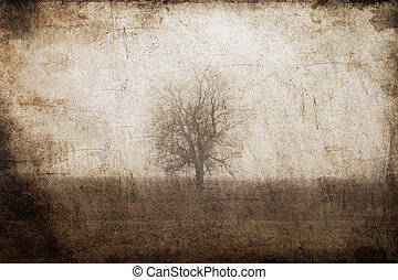 Lonely tree at field. Photo in old color image style.
