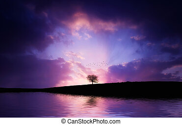 Lonely tree in the lake with sunset