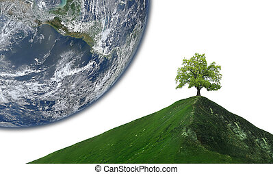 lonely tree on abstract mountain peak. Earth planet in background. Elements of this image furnished by NASA
