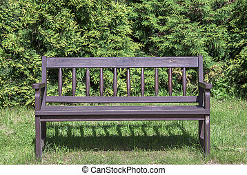 Lonely wooden bench