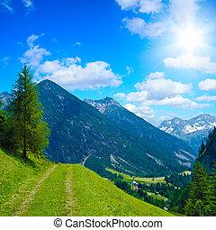 lonesome alpine trekking path