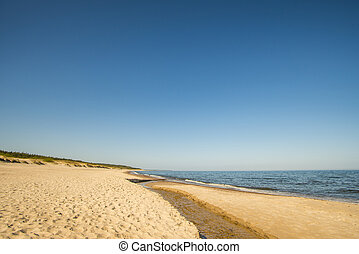 lonesome beach with a blue sky