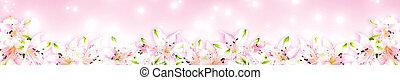 Alstroemeria flowers on pink background