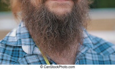 Long beard and mustache man - Closeup of long beard and...