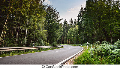 Long Curvy Forest Road In Alpine Mountains