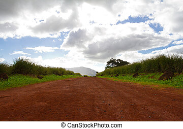 A red dirt lava rock clay road stretches out for quite some distance leading to the birthing stones on the north shore of Oahu in Hawaii. There are clouds and blue sky as well as some green grass in this horizontal image.