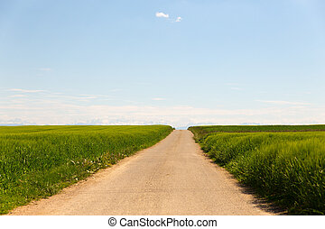 long dirt road through fields