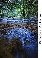 long exposure photography of natural water steam in deep forest thailand