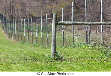 Long fence in the farm