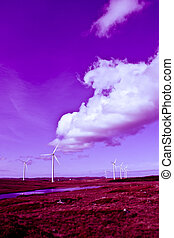 long grass and bogland with wind turbines toned