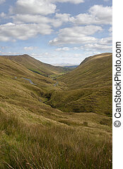 long grass and winding road with green mountains