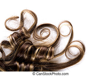 long hair - long brown hair style on white isolated ...