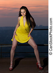 Long-legged young sexy brunette woman on a rooftop