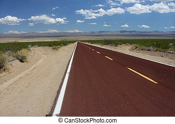 Long Road Through the Mojave Desert