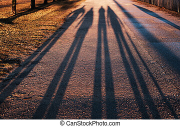 Long shadows from a group of people who walk in the evening in the park