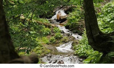long shot of small forest waterfall - long shot between...