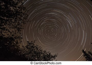 Long startrails with centre of polaris star, tree silhouette, end of summer, Slovakia