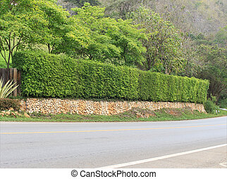 Long stone wall fence beside the road