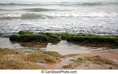 Long waves in the Atlantic ocean at night