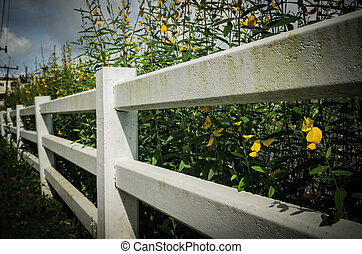 Long white fence