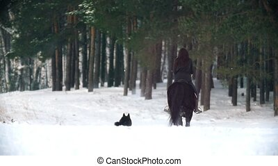 Longhaired female rider riding a black horse through the...