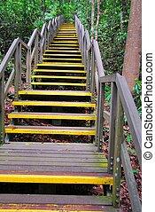 longo, estiramento, de, escadas, guiando, alto cima