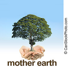 Look After Mother Earth - Female cupped hands on a clear...