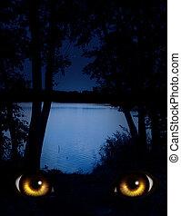 Look - Dark series - a look from darkness