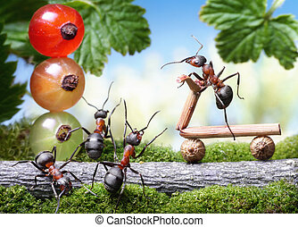 look out, bicycle loosing brake, ant tales - red traffic...