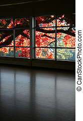 look through a window and red fall tree