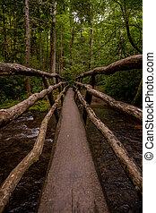 Looking Across Wooden Bridge