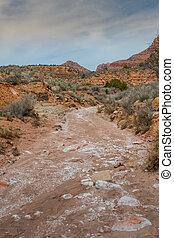 Looking Down Huber Wash in Utah Desert