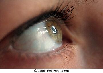 eye looking by the window