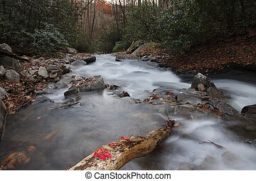 Looking Glass Creek in Pisgah National Forest.