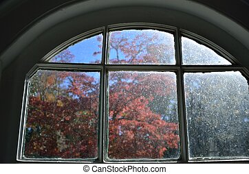 Looking out at fall colors - Fall foliage seen through an ...
